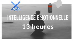 intelligence-motionnelle